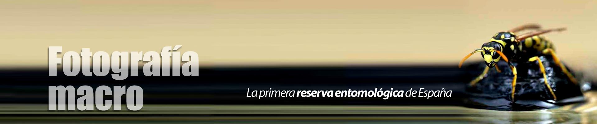 Slider-Reserva3-1920x400px