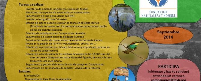 Cartel de Voluntariado_septiembre FNYH