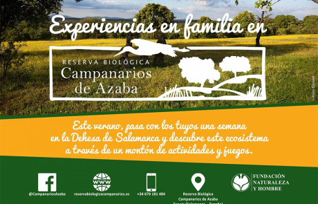 Verano en familia en la Dehesa / Family summer in the Dehesa