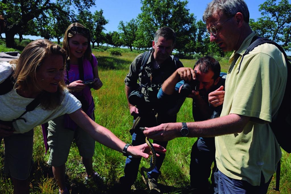 Visita de grupo descubriendo la fauna de la Reserva